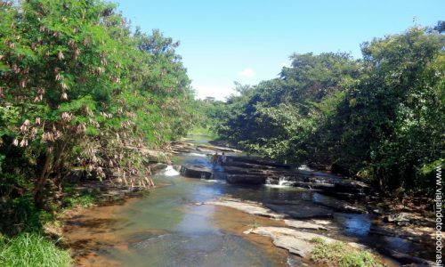 Córrego do Ouro (15)