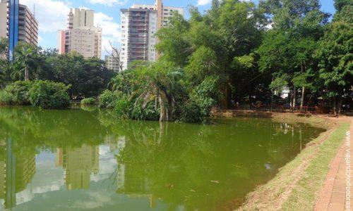 Goiânia - Bosque dos Butiris