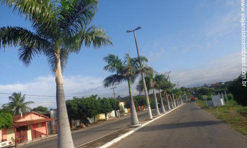 Luís Gomes - Avenida Senhora Santana