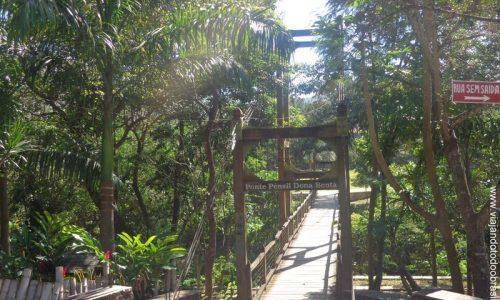 Pirenópolis - Ponte Pênsil Dona Benta