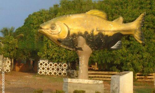 Urupá - Monumento em homenagem ao Tambaqui