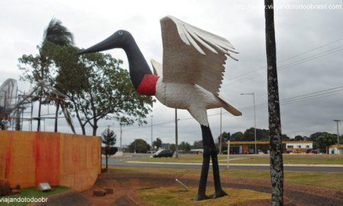 Campo Grande - Garças em frente ao Aeroporto