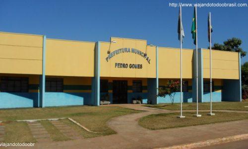 Prefeitura Municipal de Pedro Gomes