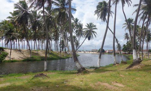 Rio do Fogo - Rio Punaú